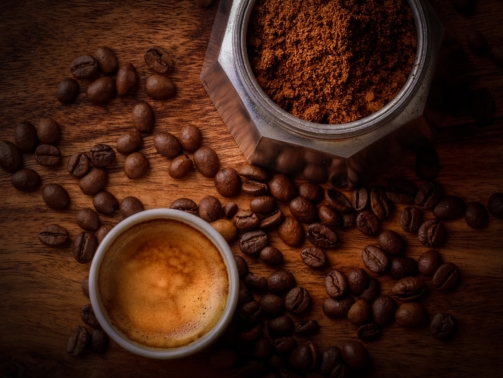 Kopi Luwak - was macht den Katzenkaffee so besonders?