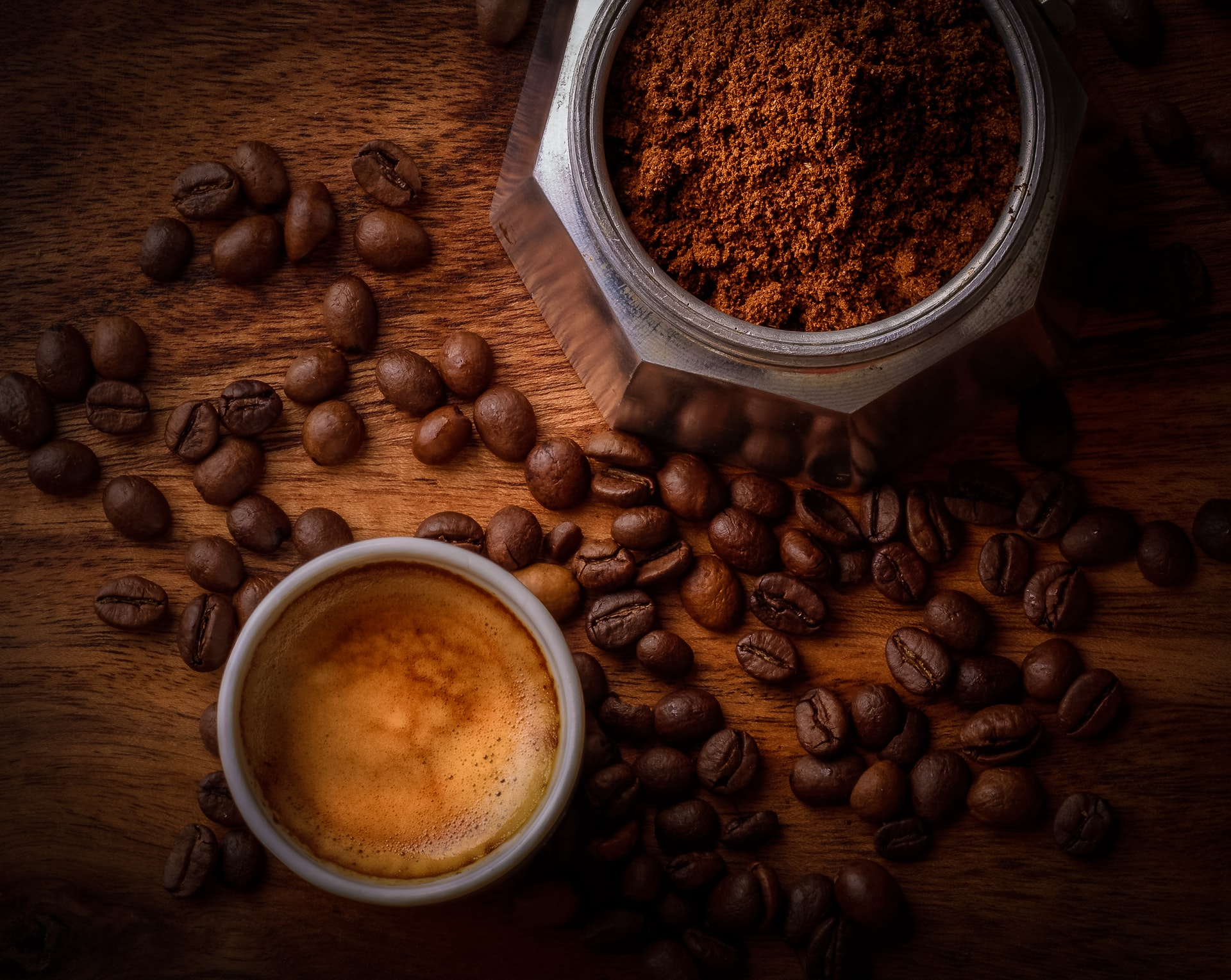 Kopi Luwak – was macht den Katzenkaffee so besonders?